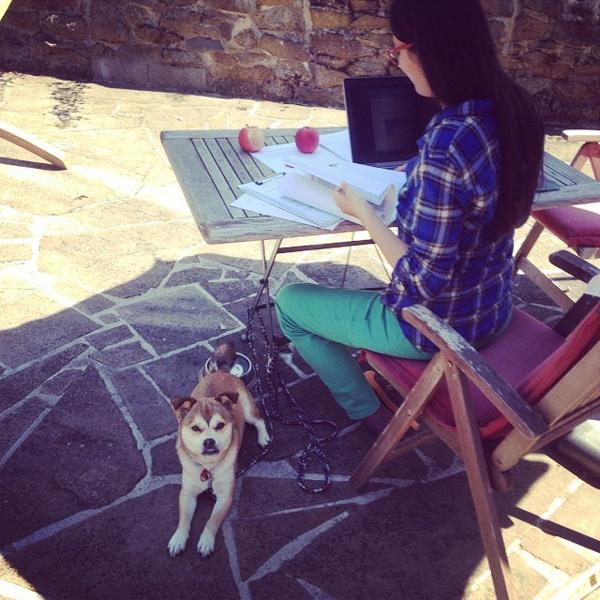 lea-hamann-outdoor-office