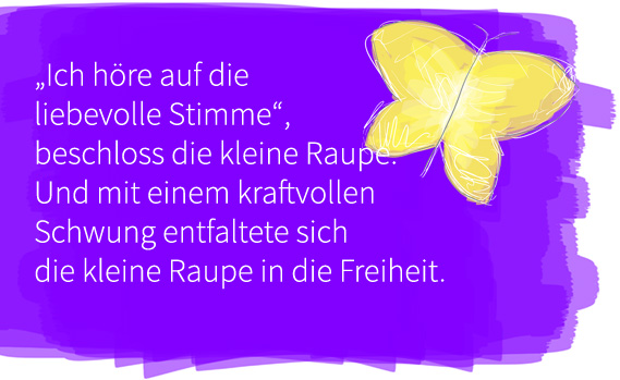 schmetterling-05